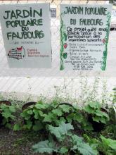 Souvenirs du premier été du Jardin populaire du Faubourg.  Photos : Macarena Silva